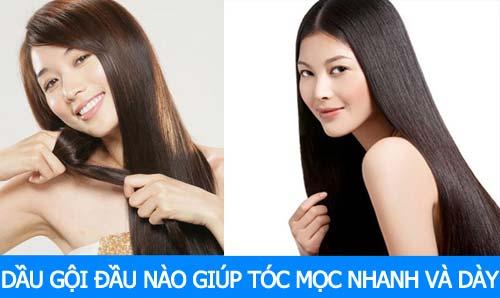 loại dầu gội đầu nào giúp tóc mọc nhanh và dày bạn có biết
